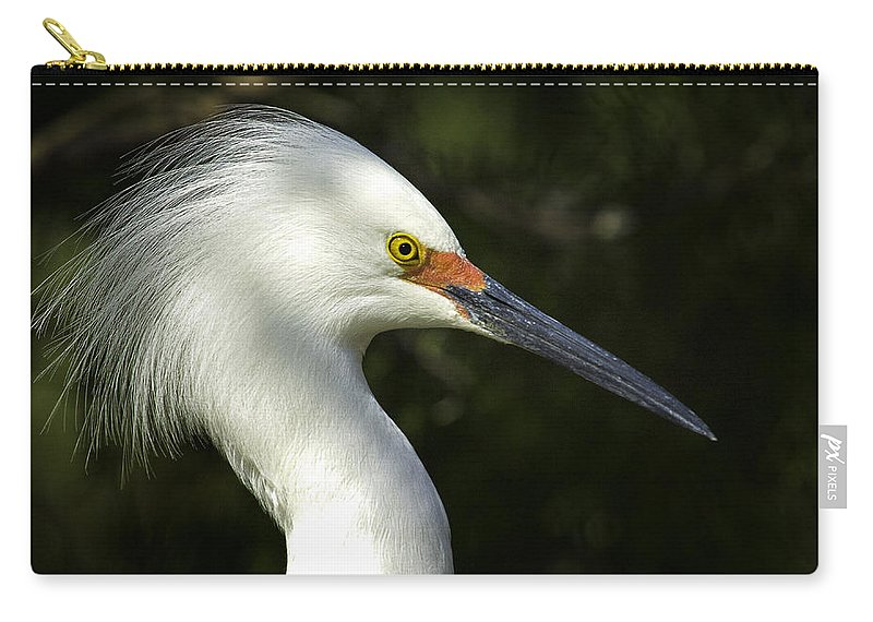 Bird Carry-all Pouch featuring the photograph Snowy Egret by Fran Gallogly