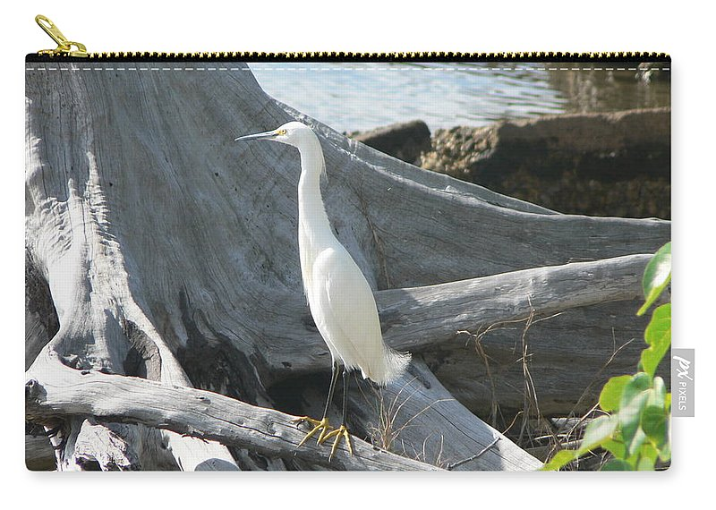 Snowy Carry-all Pouch featuring the photograph Snowy Egret by Laurel Best