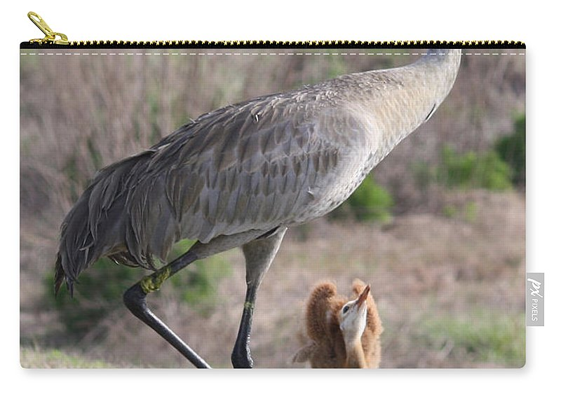 Sandhill Cranes Carry-all Pouch featuring the photograph So Big by Carol Groenen