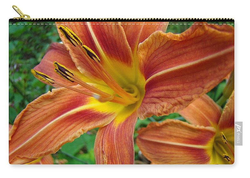 Daylily Carry-all Pouch featuring the photograph Soaking Up The Sun - Orange Daylily by Mother Nature