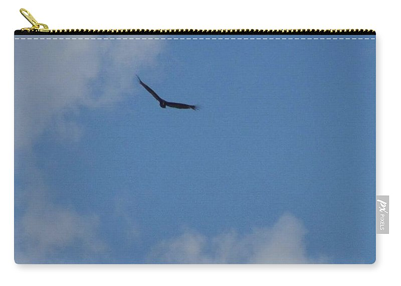 Hawk Carry-all Pouch featuring the photograph Soaring The Blue Skies by Maria Urso
