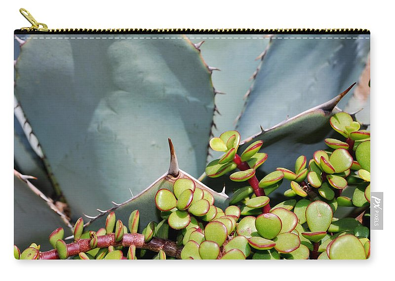 Agave Carry-all Pouch featuring the photograph Soft And Sharp by Heather Kirk