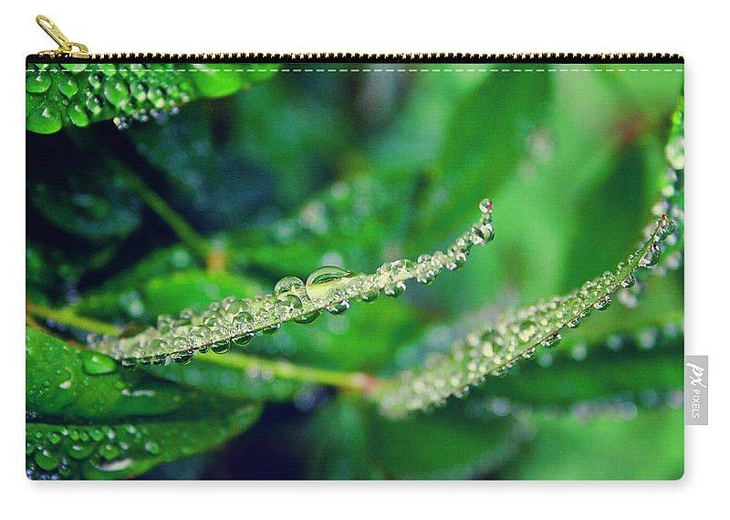 Garden Carry-all Pouch featuring the photograph Water Droplets On Green Leaves by Toni Hopper