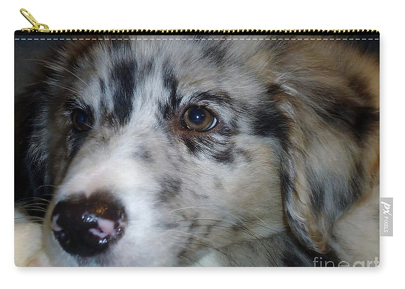 Puppy Carry-all Pouch featuring the photograph Softness by Art Dingo
