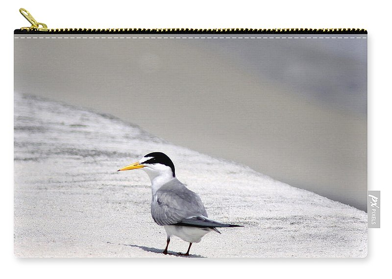 Gulls Carry-all Pouch featuring the photograph Solo by Travis Truelove