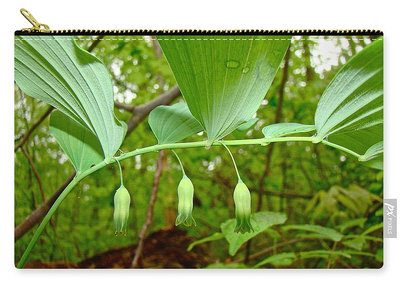 solomon's Seal Carry-all Pouch featuring the photograph Solomon's Seal Wildflower - Polygonatum Commutatum by Mother Nature