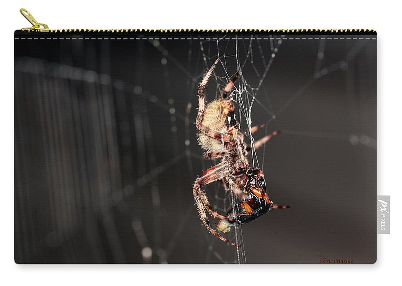 Spider Carry-all Pouch featuring the photograph Spider by Ericamaxine Price