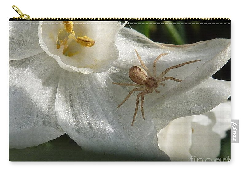 Spider Carry-all Pouch featuring the photograph Spider In Narcissus by Rain Shine