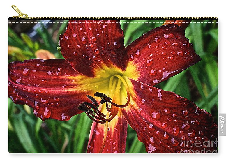 Floral Carry-all Pouch featuring the photograph Spiderman The Day Lily by Susan Herber