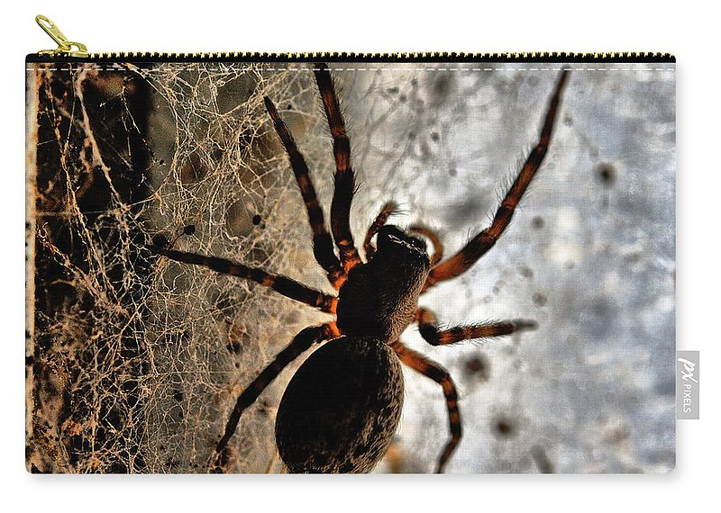 Spider Carry-all Pouch featuring the photograph Spiders Home by Chriss Pagani