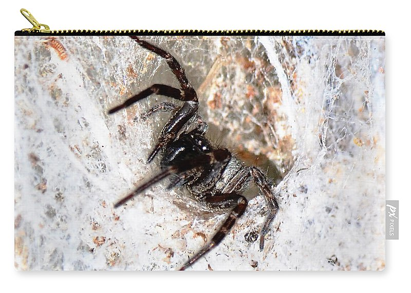 Web Carry-all Pouch featuring the photograph Spiders Trap by Chriss Pagani