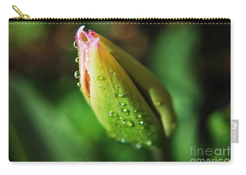 Yhun Suarez Carry-all Pouch featuring the photograph Spring Flower by Yhun Suarez