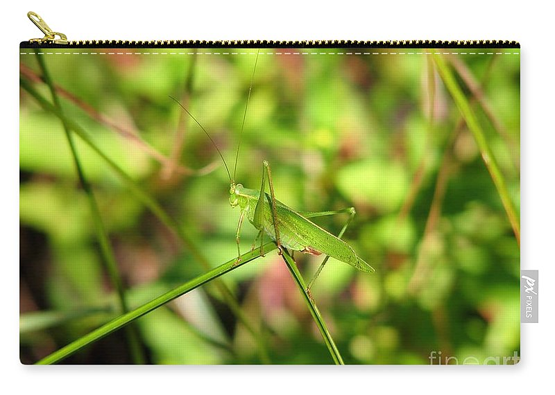 Grass Carry-all Pouch featuring the photograph Spring Hopper by Art Dingo