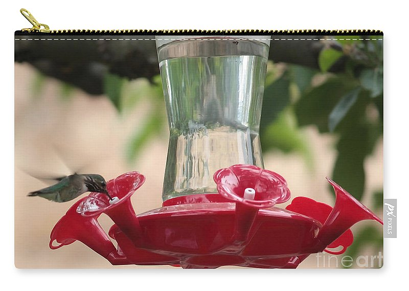 Hummingbird Carry-all Pouch featuring the photograph Spring Hummingbird At Feeder by Carol Groenen