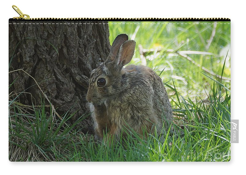 Rabbit Carry-all Pouch featuring the photograph Spring Rabbit by Lori Tordsen
