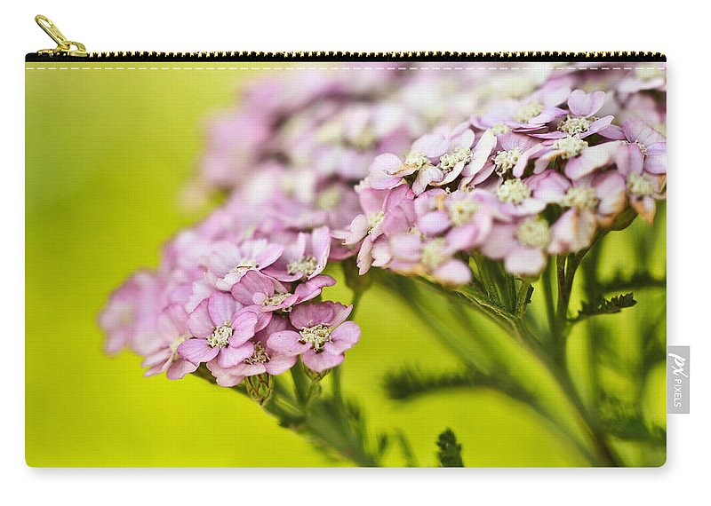 Carry-all Pouch featuring the photograph Spring's Delight by Heidi Smith