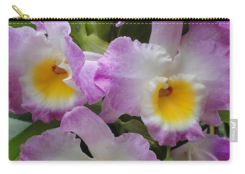 Orchids Carry-all Pouch featuring the photograph Springy Ruffles by Trish Hale