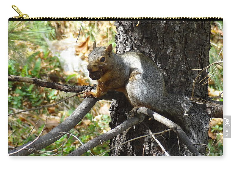 Squirrel Carry-all Pouch featuring the photograph Squirrling Away by Laurel Best