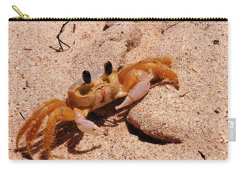 Beach Carry-all Pouch featuring the photograph St. Lucia Crab On Beach by Kimberly Perry