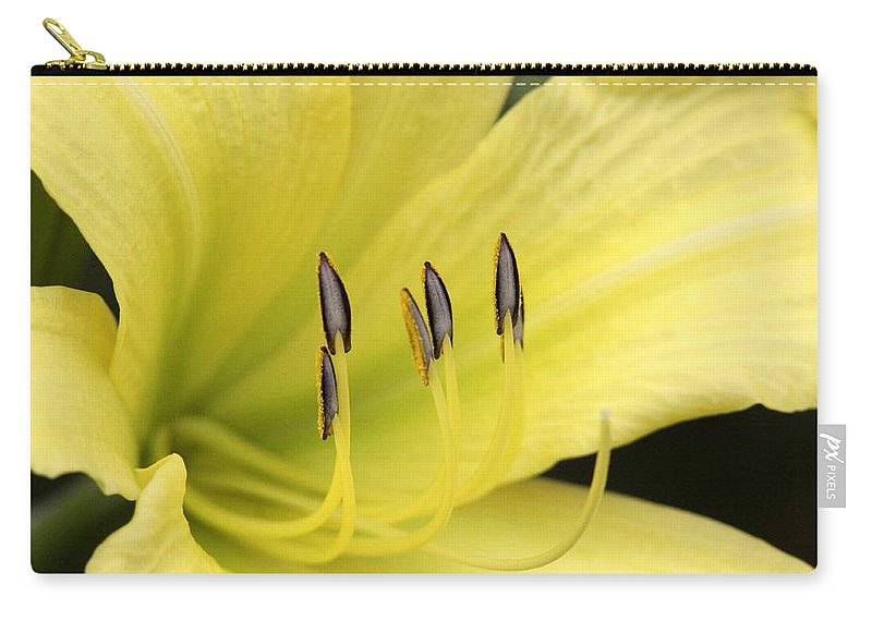 Carry-all Pouch featuring the photograph Standing Tall by Travis Truelove