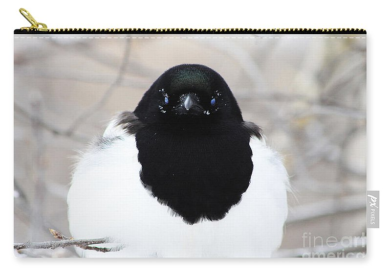 Carry-all Pouch featuring the photograph Staring Contest by Alyce Taylor