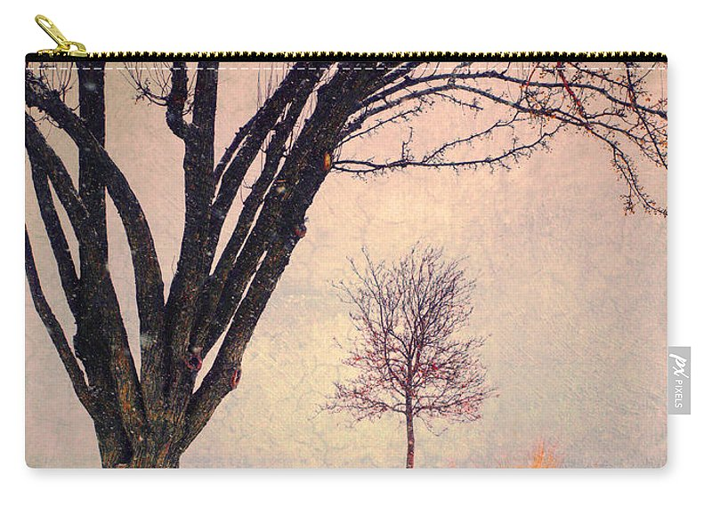 Storm Carry-all Pouch featuring the photograph Storm Passing by Tara Turner
