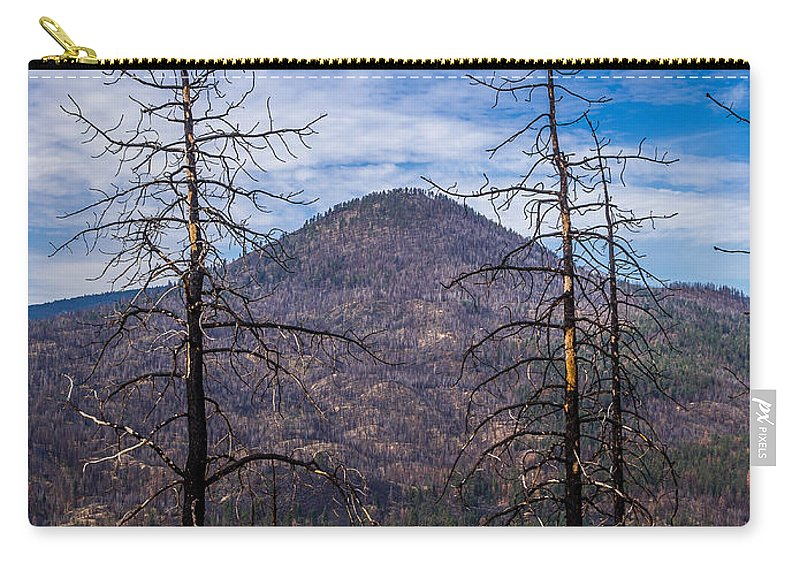 Sugarloaf Peak Carry-all Pouch featuring the photograph Studies On Sugarloaf Peak 2 by Greg Nyquist