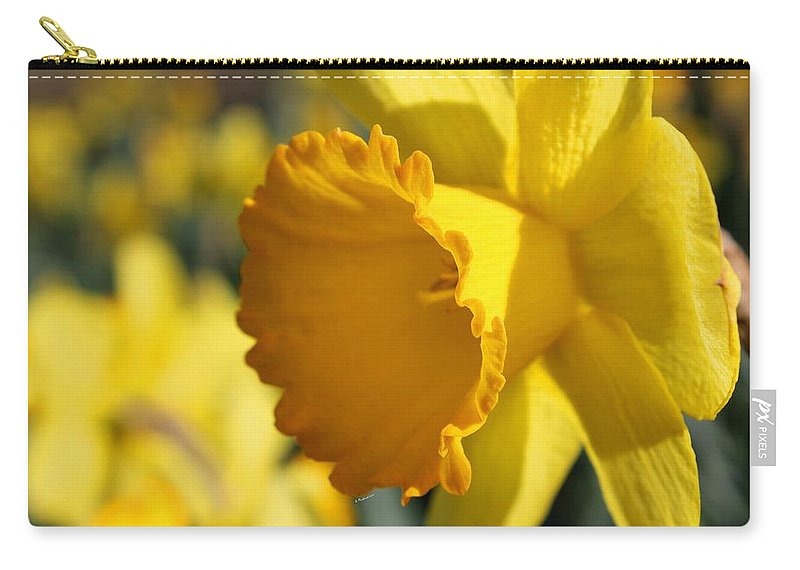 Daffodil Carry-all Pouch featuring the photograph Stylin' An Profilin' by Betty Northcutt