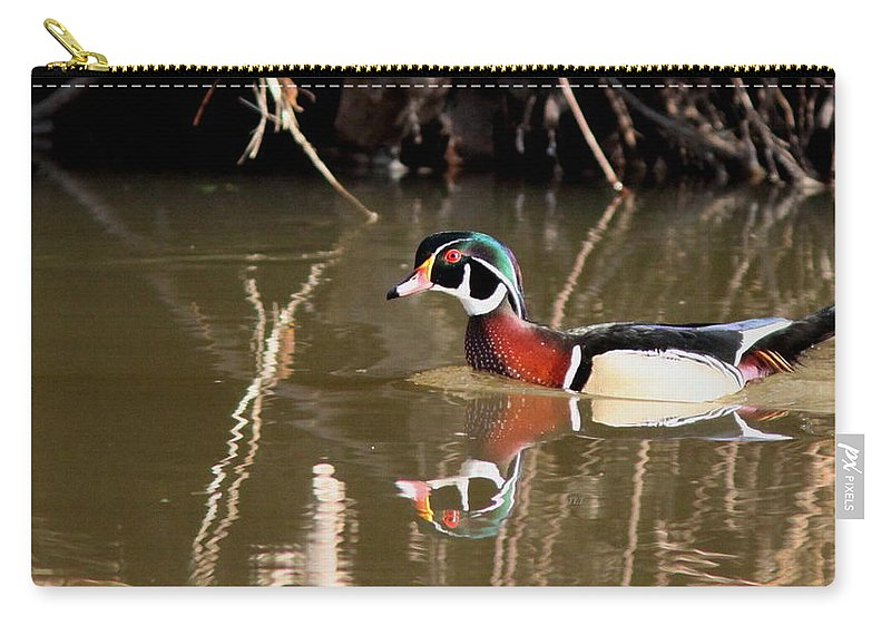 Wood Duck Carry-all Pouch featuring the photograph Sucarnoochee River - Suspicious Wood Duck by Travis Truelove