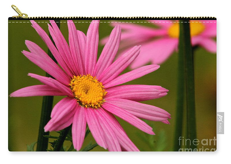 Flower Carry-all Pouch featuring the photograph Summer Pink by Rick Monyahan
