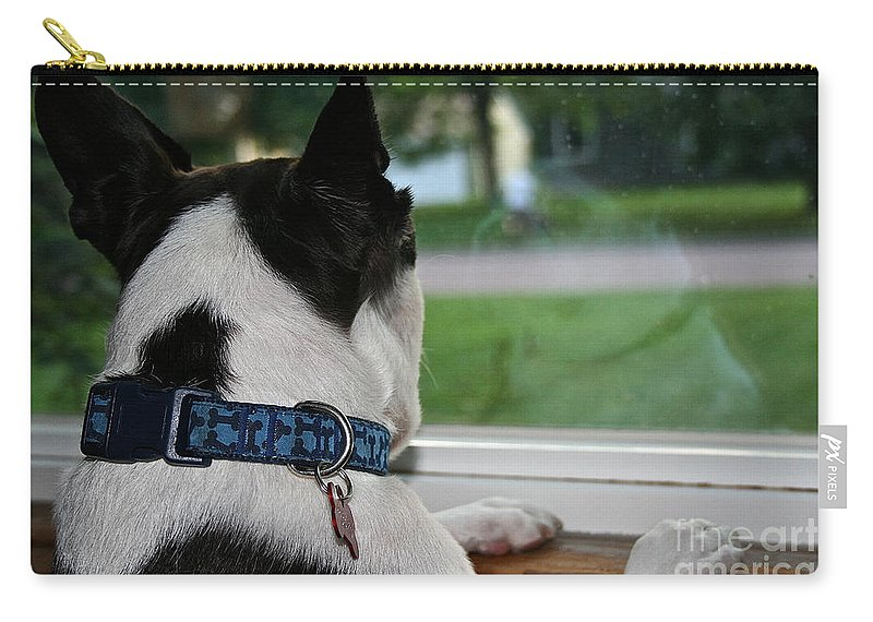 Animal Carry-all Pouch featuring the photograph Summer Reflection by Susan Herber