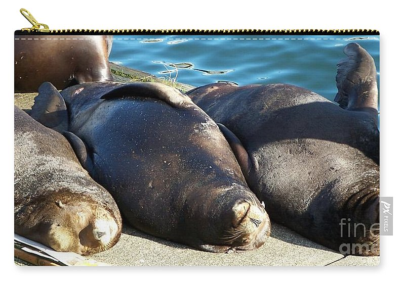 Sunbathing Sea Lions Carry-all Pouch featuring the photograph Sunbathing Sea Lions by Chalet Roome-Rigdon