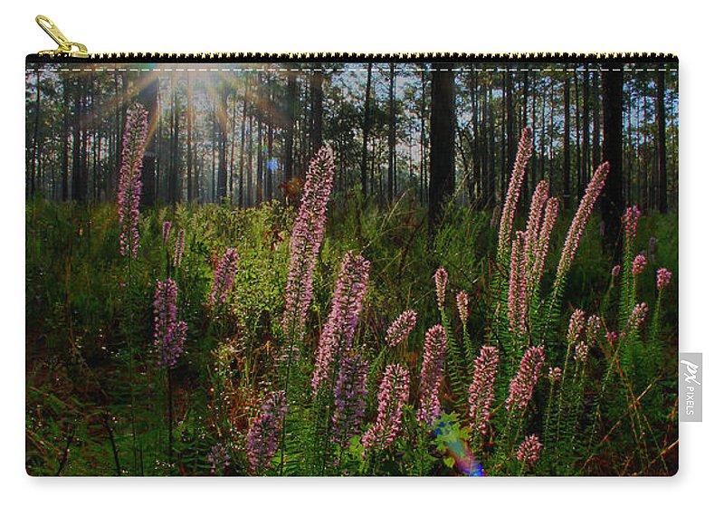 Liatris Elegans Carry-all Pouch featuring the photograph Sunburst On Elegant Liatris by Barbara Bowen