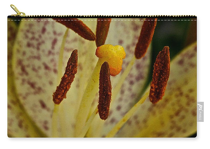 Floral Carry-all Pouch featuring the photograph Suncrest by Susan Herber