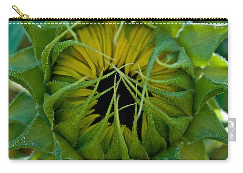 Sunflower Carry-all Pouch featuring the photograph Sunflower Kisses by Tikvah's Hope
