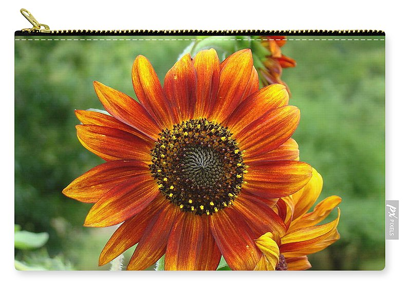 Red Sunflower Carry-all Pouch featuring the photograph Sunflower by Lisa Rose Musselwhite