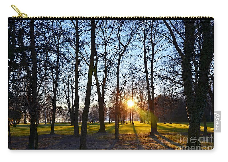 Sunlight Carry-all Pouch featuring the photograph Sunlight Between The Trees by Mats Silvan