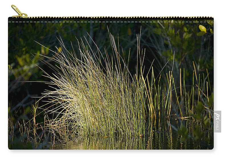 Carry-all Pouch featuring the photograph Sunlight On Grass Original by Rich Franco