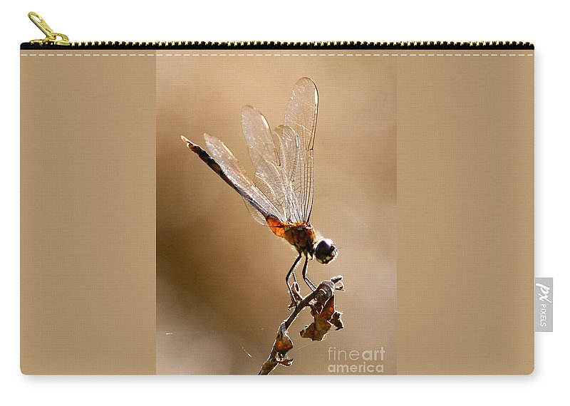 Dragonfly Carry-all Pouch featuring the photograph Sunlight Through Golden Wings by Carol Groenen
