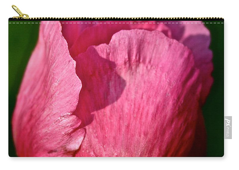 Plant Carry-all Pouch featuring the photograph Sunrise Pink by Susan Herber