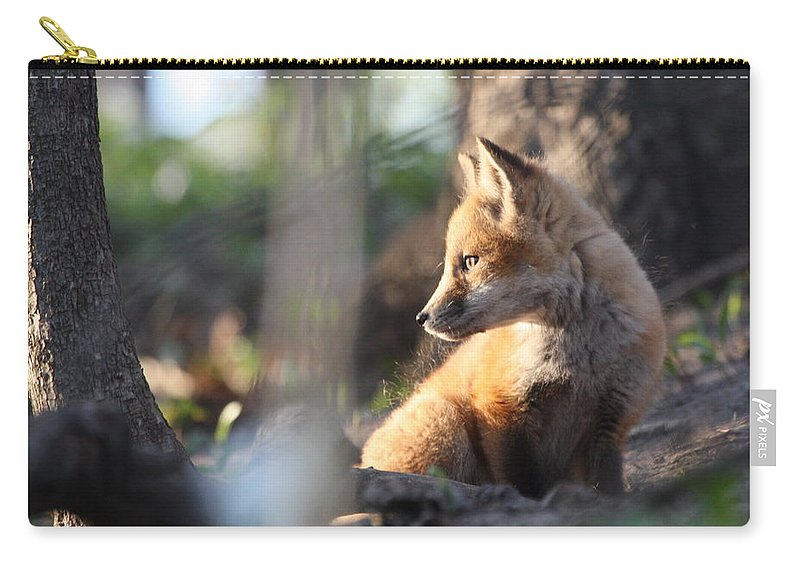Sunset Carry-all Pouch featuring the photograph Sunsetting On Youth by Teresa McGill