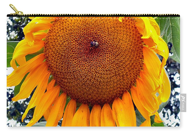 Bee Carry-all Pouch featuring the photograph Sunshine by Art Dingo