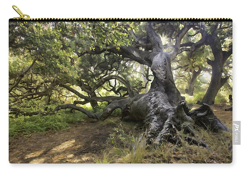 Tree Carry-all Pouch featuring the digital art Sunstar Oak by Sharon Foster