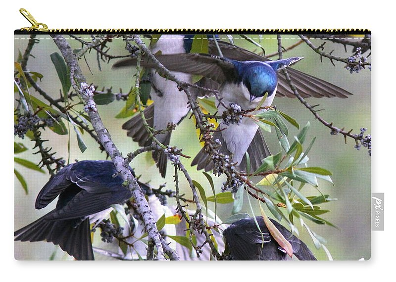 Tree Swallows Carry-all Pouch featuring the photograph Swallows In Pooler by Travis Truelove
