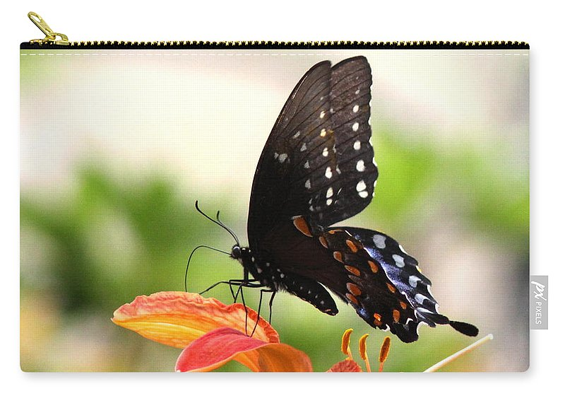 Swallowtail Butterfly Carry-all Pouch featuring the photograph Swallowtail - Lite And Lively by Travis Truelove