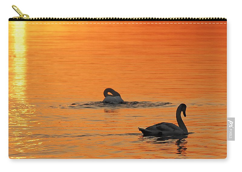 Swans At Dawn Carry-all Pouch featuring the photograph Swans In Early Light by Randall Branham
