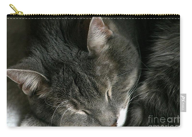 Cat Carry-all Pouch featuring the photograph Sweet Dreams by Living Color Photography Lorraine Lynch