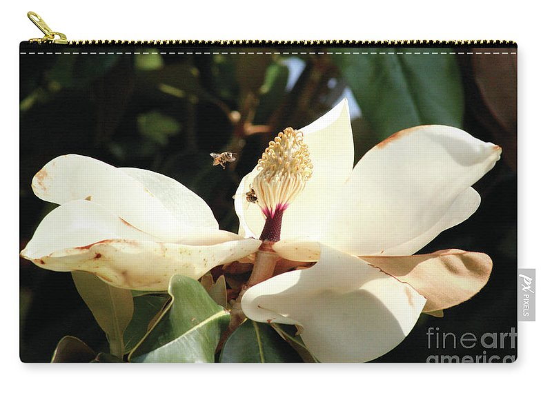 Sweet Carry-all Pouch featuring the photograph Sweet Magnolia by Alycia Christine