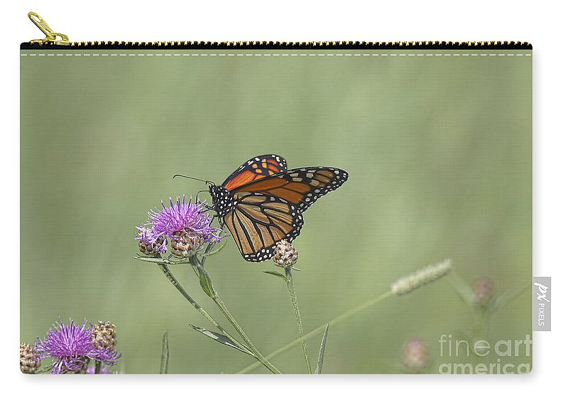 Flowers Carry-all Pouch featuring the photograph Sweet Nectar by Deborah Benoit
