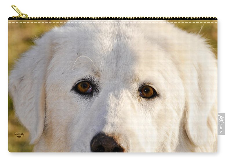Dog Carry-all Pouch featuring the photograph Sweetie In The Boonies by Trish Tritz